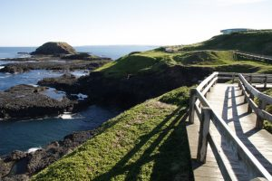 The Nobbies Boardwalk on the Best of Victoria Tour