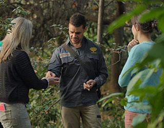 Aboriginal Heritage Walk at Royal Botanic Gardens
